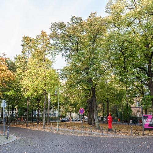 Fasanenplatz
